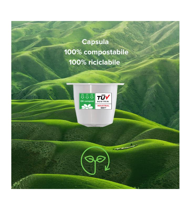 SACCHI GRANI CAFFÈ COSMAI 250g - IL PURO
